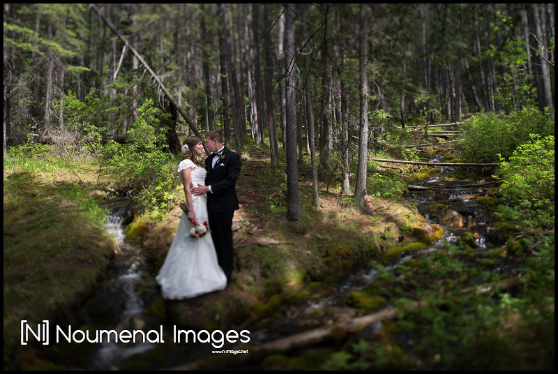 Calgary Wedding Photography  Kananaskis