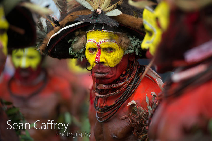 Huli Wigmen with body paint and ceremonial headdress performing at Goroka sing-sing