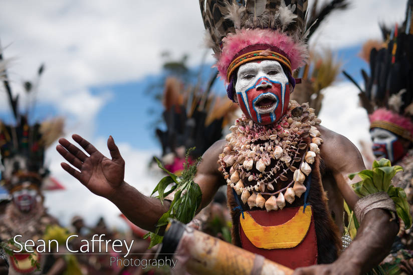 Tribal man with red and blue face paint and bird of paradise feather headdress at Goroka sing-sing (Tokua Culture Singsing Group)