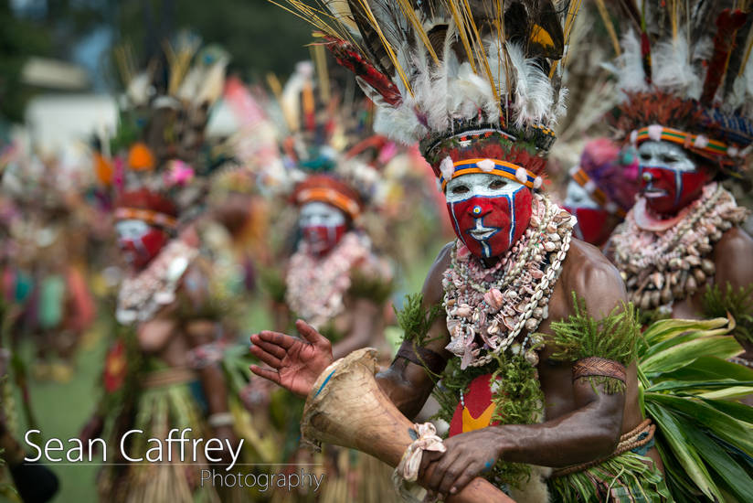 Tribal man with red face paint and feather headdress playing drum at Goroka sing-sing (Tokua Culture Singsing Group)