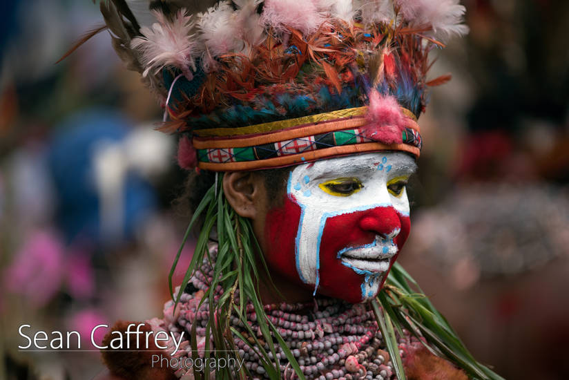 Tribal women with red, white and blue face paint and feather headdress at Goroka sing-sing (Tokua Culture Singsing Group)