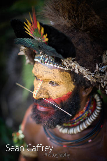 Huli Wigman in cerimonial wig and traditional face paint.